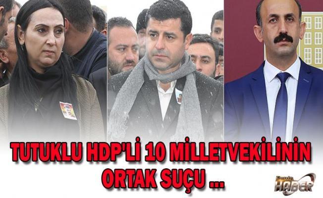 Tutuklu HDP'li 10 vekilin ortak suçu: 'Terör'