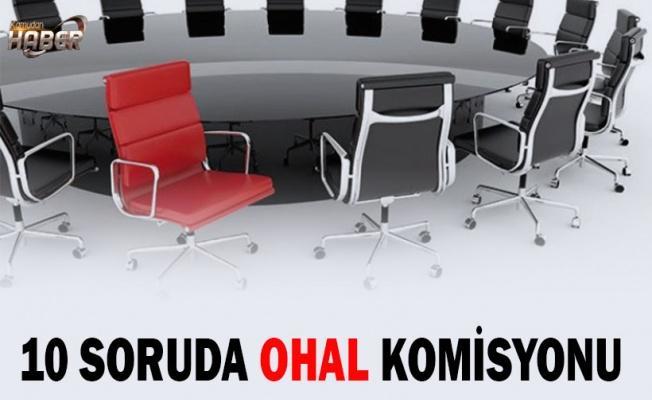 10 soruda OHAL komisyonu